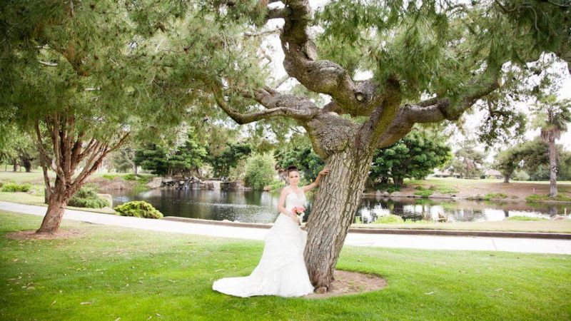 bride-tree-lake